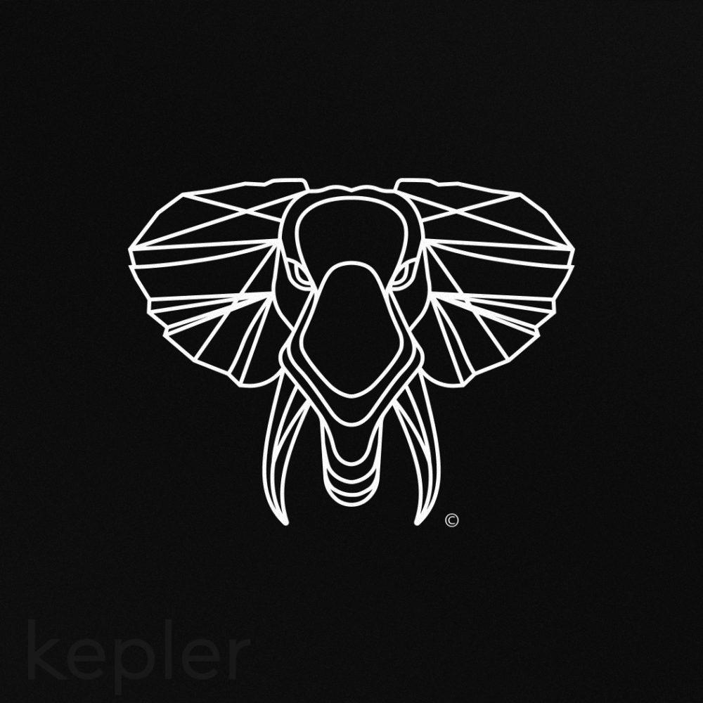 KEPLER_REDO2019